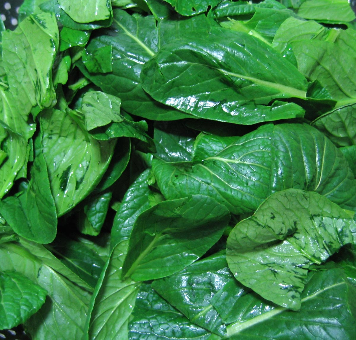 Spinach-Leafy-Greens-Vegetable-Close-up